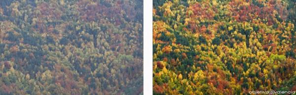 Comparativa entre JPG (izquierda) y RAW procesado (derecha).