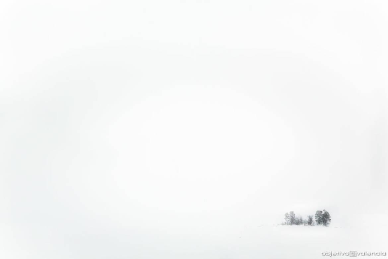 laponia-auroras-62.jpg
