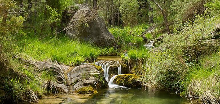 El nacimiento del río Palancia